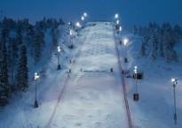 fis-freestyle-skiing