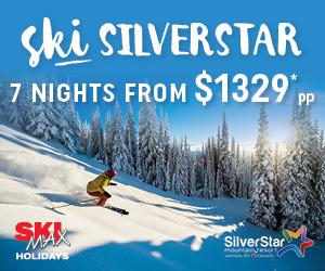 14001_SKIMAX_Silverstar Web Gutter_MREC